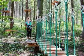Your kids will have fun in the wire park climbing between the trees.